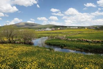 Ayşe Tolga'nın Kars Boğatepe Köyü Maceraları!