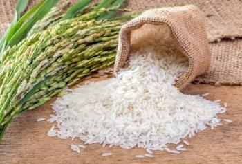 Seher Akgül'den Cilt Lekelerini Ve Akne İzlerini Geçiren Pirinç Kremi Tarifi!