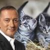 Skech Art'tan Lion King Tablosu!